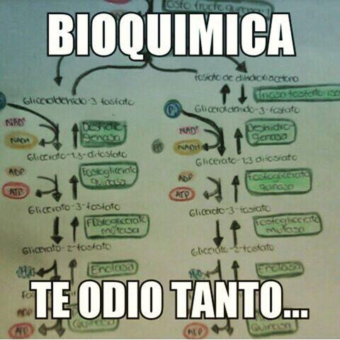 Bioquimica Frases Para Medicos Frases Y Te Odio