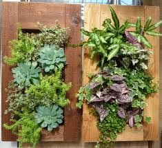 Image Result For How To Make Living Wall Planters