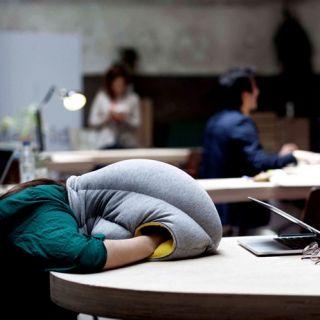 no lo puedo creer! me han leido el pensamiento! juas juas juas  Ostrich Pillow