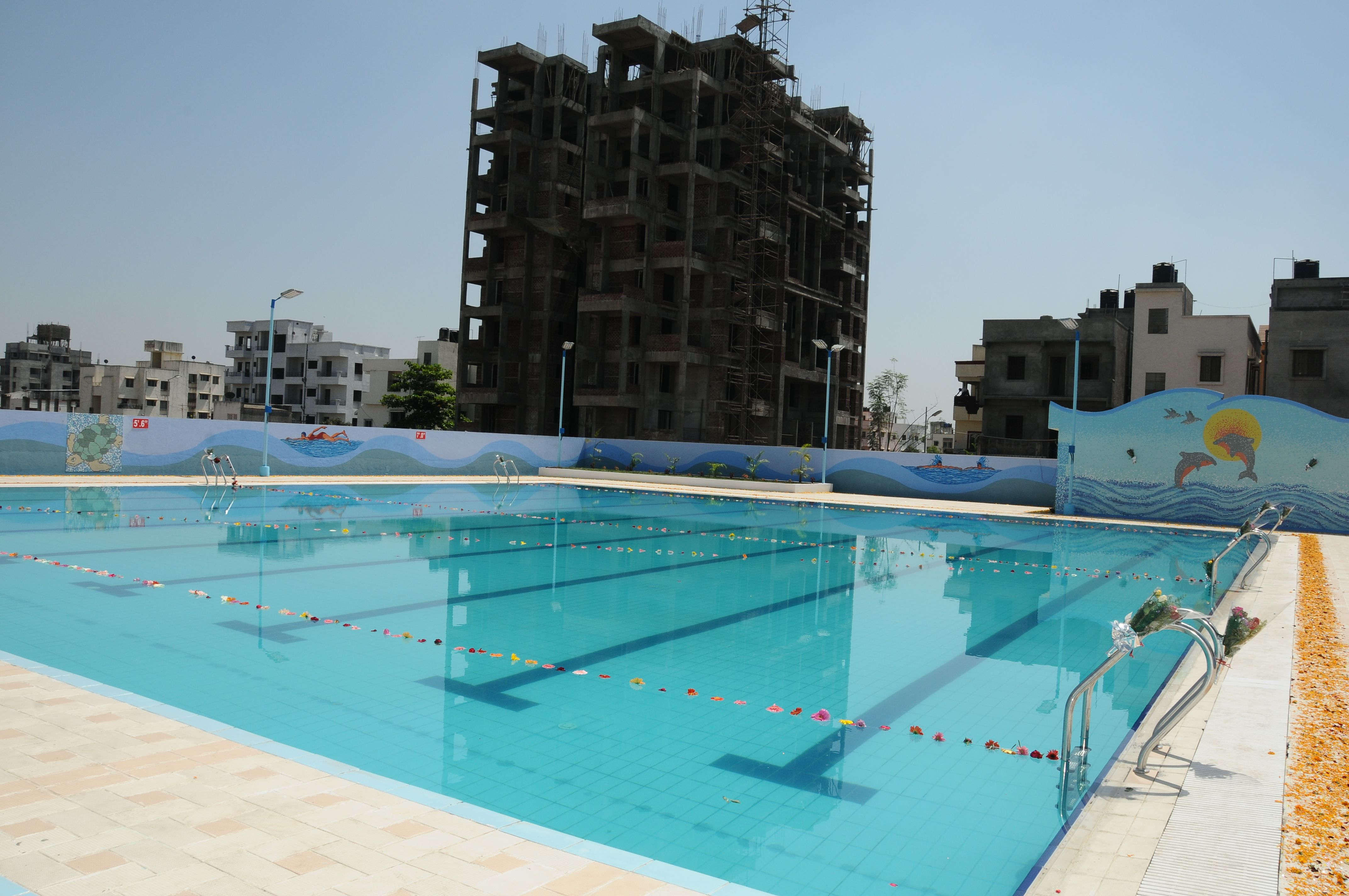 Best Commercial Swimming Pool Construction Company In Affordable Price |  Swimming, Swimming Pool Construction And Swimming Pool Designs