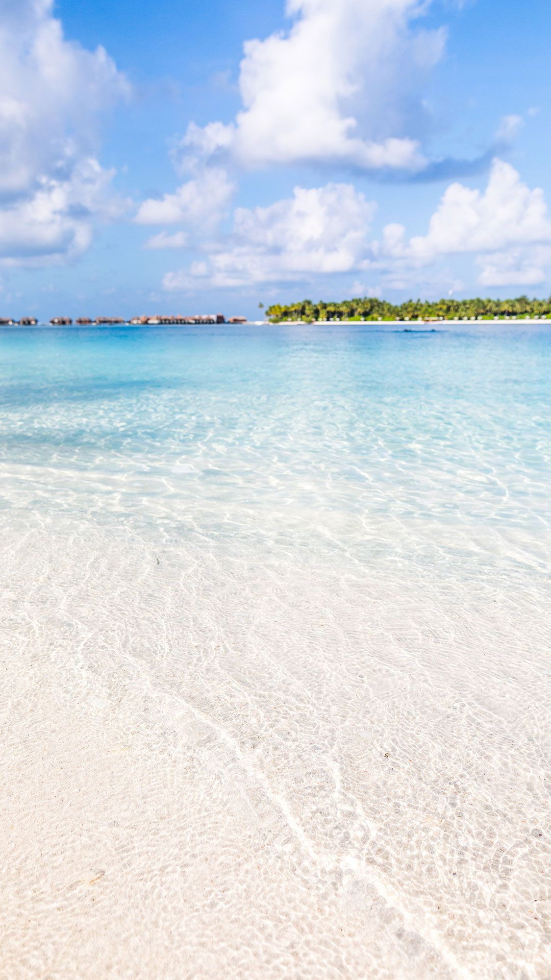 116 Free Beach Wallpapers For Your Phone Desktop Beach Wallpaper Maldives Wallpaper Ocean Wallpaper