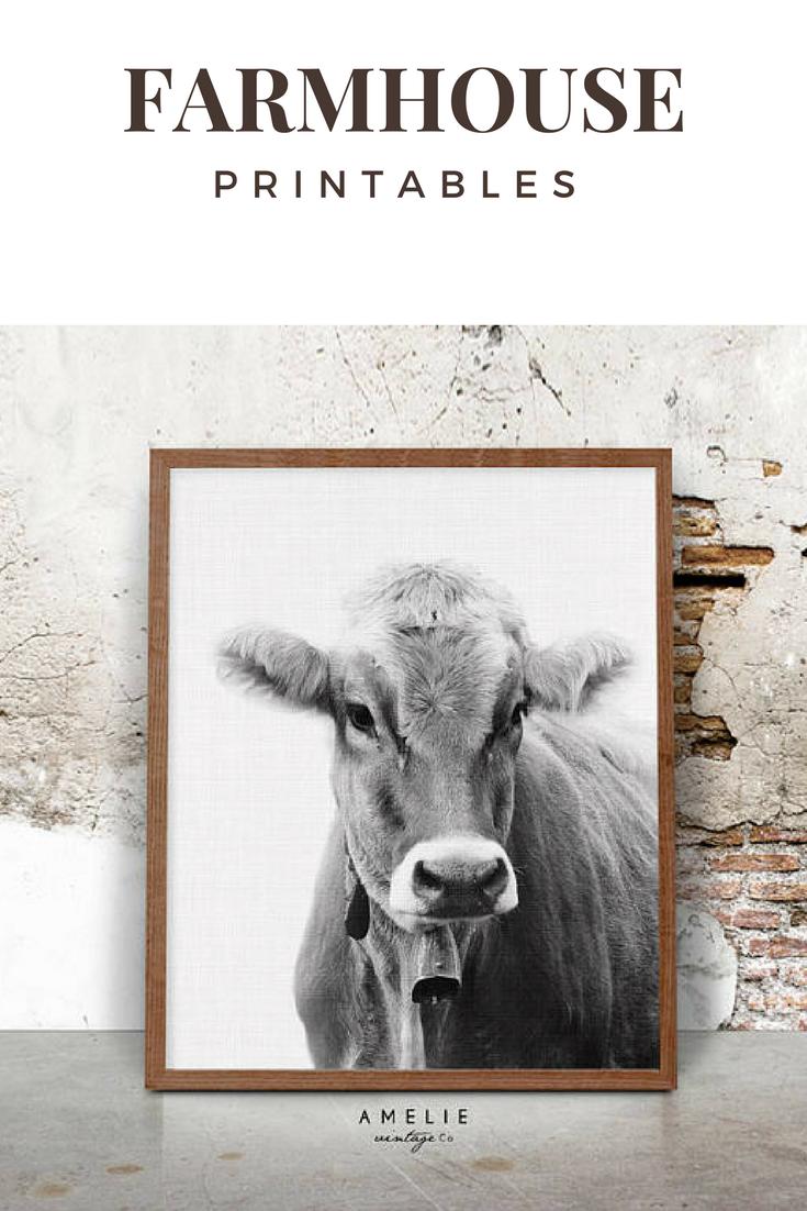 Cow Wall Art Print Farmhouse Decor Black And White Farm Animal Photography Rustic Home Decor Printable La Cow Wall Art Printable Wall Art Bedroom Cow Decor