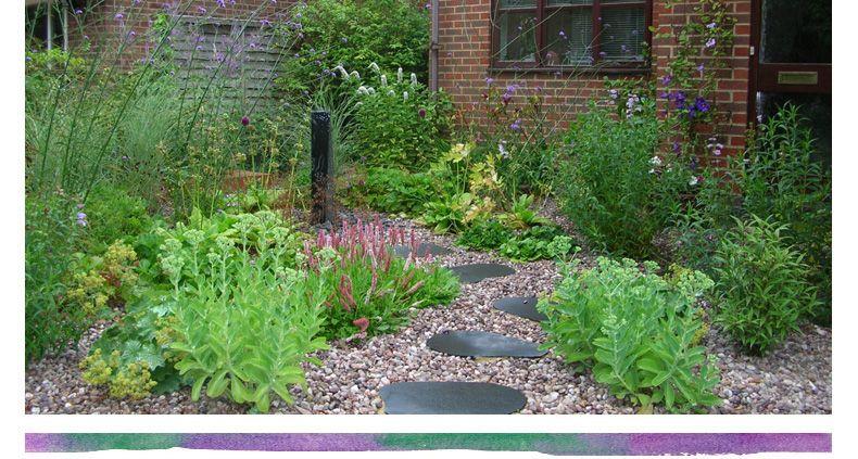 Rebecca Webb Garden Designs