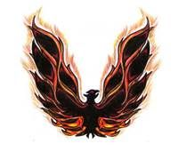 Pin By Mary Ayetey On Phoenix Birds Tattoos For Guys Tattoos Phoenix Tattoo Design