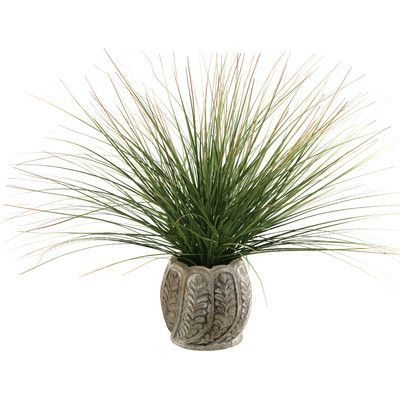 D & W Silks Onion Grass in Round Ceramic Pot
