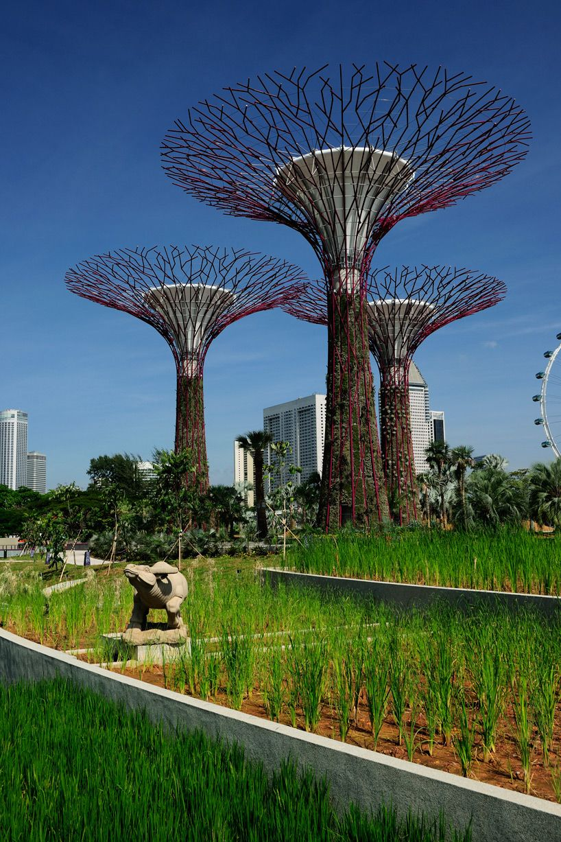 grant associates bay south gardens by the bay Singapore