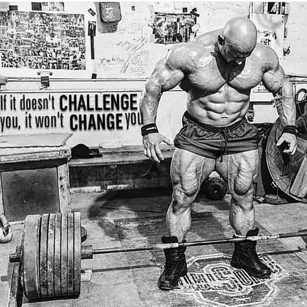 Iron Discipline Co On Instagram Complacency Never Did Anyone Any Good Fitfam Fitness Ohios Bodybuilding Motivation Training Motivation Powerlifting