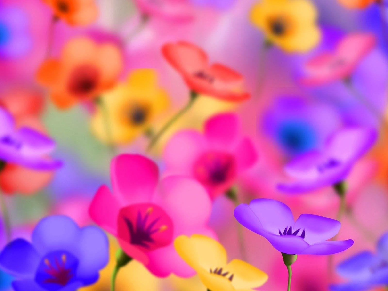 Beautiful flowers wallpaper free download archives free desktop - Nature Wallpaper Wallpapers For Free Download About Hd Flower Wallpaperbeautiful