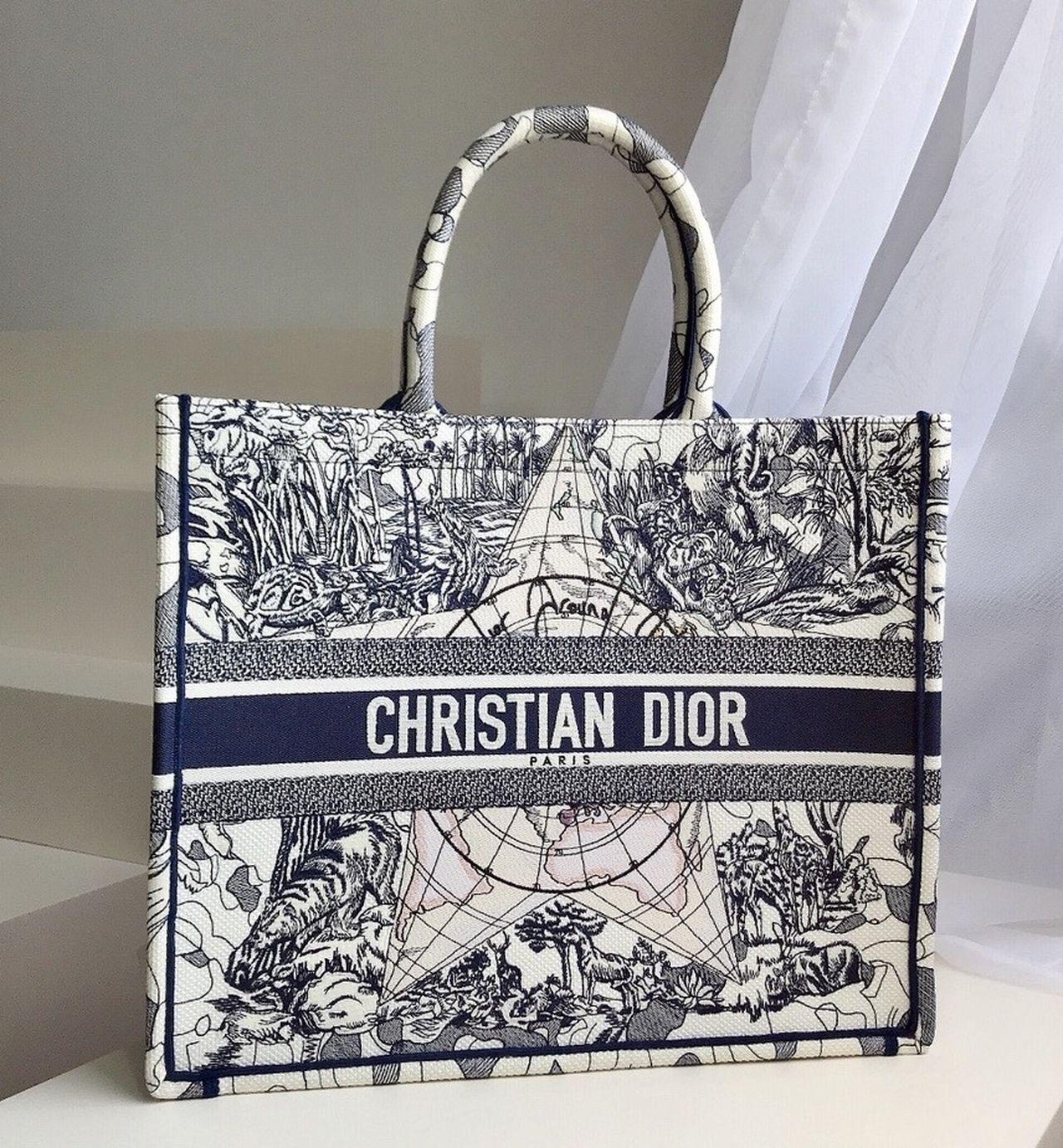 Christian dior dior book tote blue multicolor dior around
