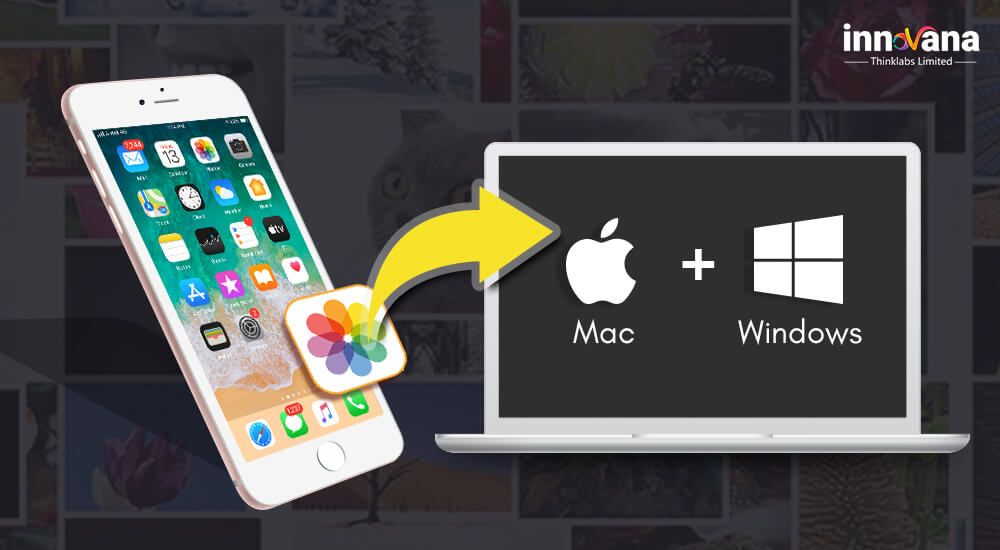 Want to know about how to transfer your photos from iPhone