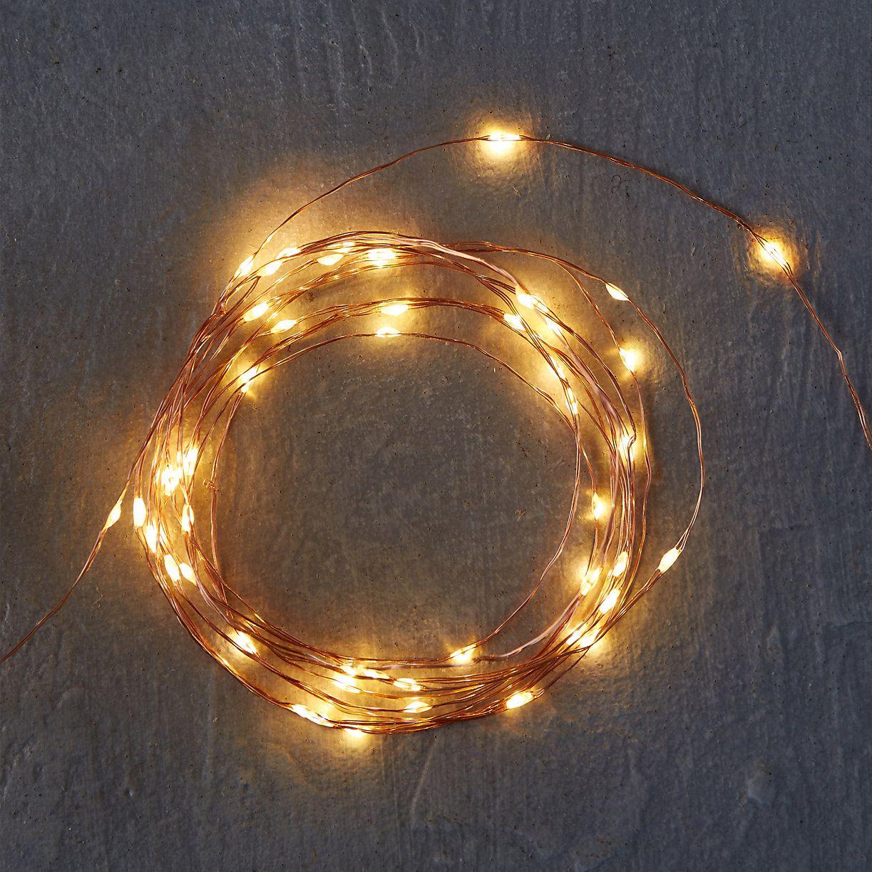 Stargazer Copper Twine Lights 50 Plug In Terrain Large Backyard Landscaping Backyard Garden Layout Autumn Lights