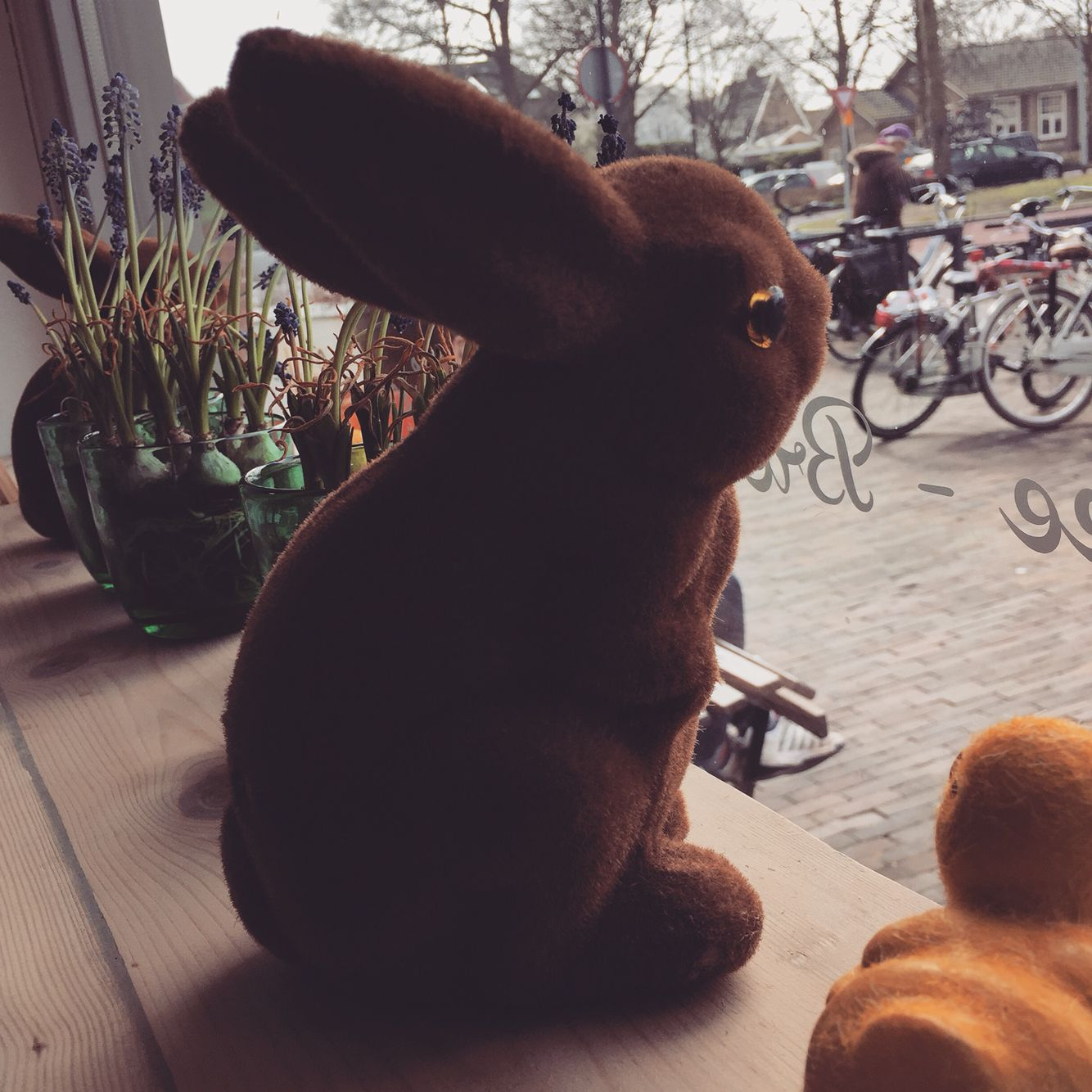 This easter bunny looks like he's longing to go outside #lookssad #easter