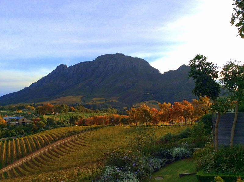 The perfect spot to enjoy a nice glass of red wine... #CapeTown #SouthAfrica