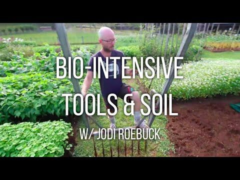 08827eb1bd84db0dc49358d58cac37fe - How To Make Bio Intensive Gardening