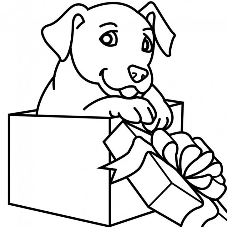 Free Puppy In A Gift Box Coloring Sheet Online Puppy Coloring