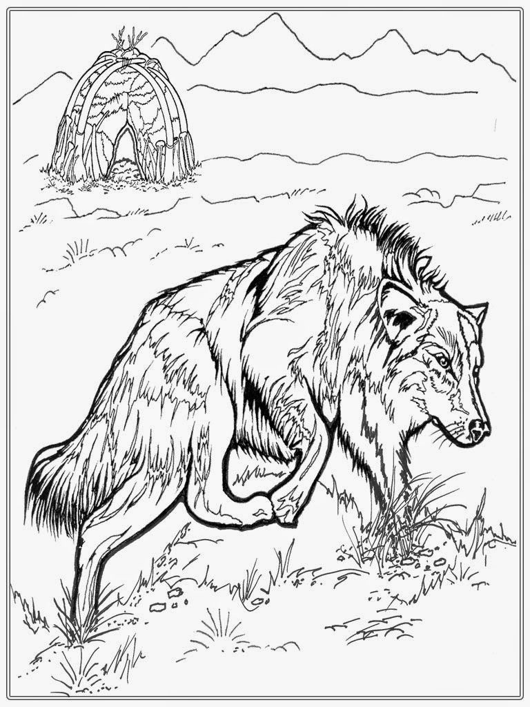 Free Adult Coloring Pages Wolf Coloring Pics Pinterest Adult