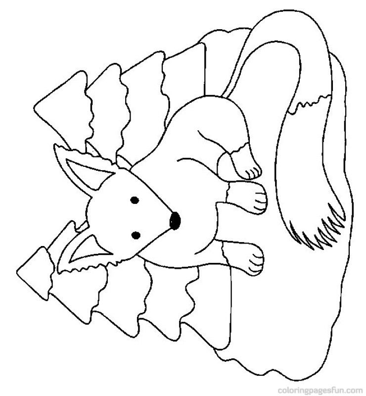 fox coloring pages 16 free printable coloring pages