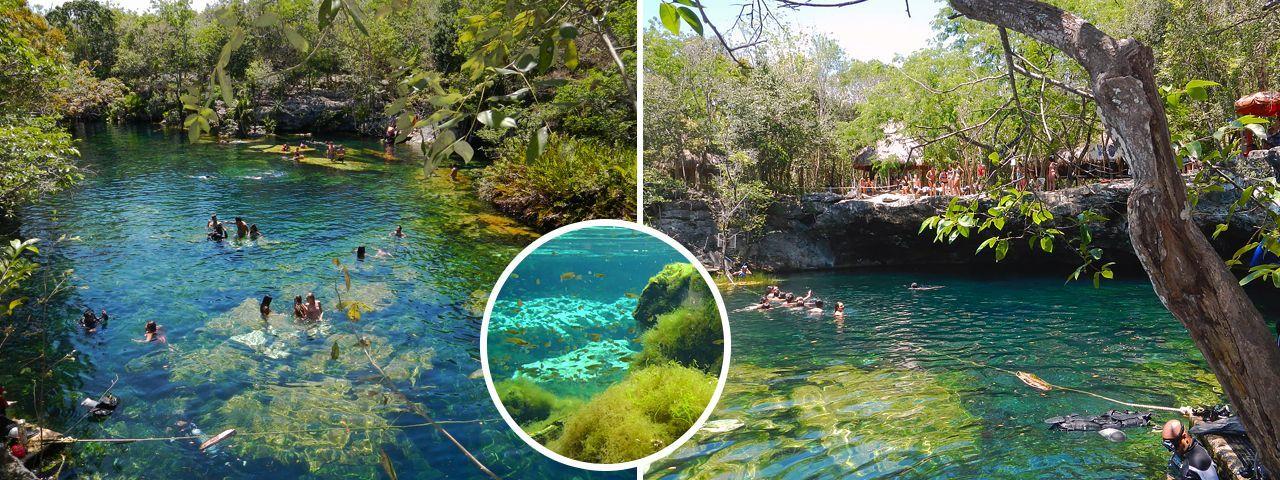 Cenote jardin del eden riviera maya places to go for Los jardines del eden