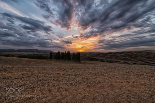 Cypress of San Quirico d'Orcia Siena by GionataTammaro  trees sky sunset travel light clouds italy tree nikon green italia hills toscana tuscany si siena tr