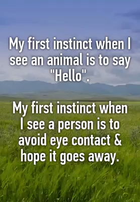 Photo of 17 Introverts Share What's Really Going On In Their Mind
