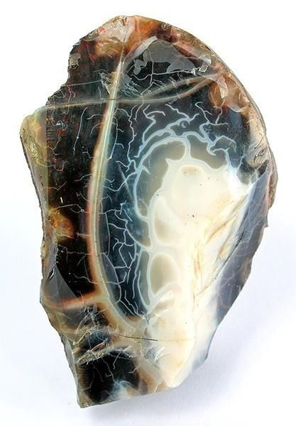 Opal / Virgin Valley District, Humboldt Co., Nevada - The Virgin Valley opal fields of Humboldt County in northern Nevada produce a wide variety of precious black, crystal, white, fire, and lemon opal. The black fire opal is the official gemstone of Nevada.