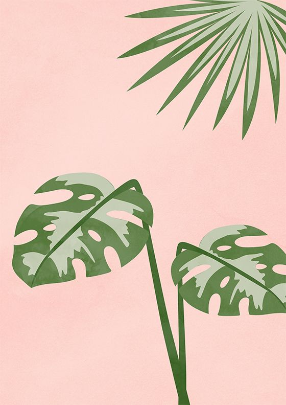 This is a digital file, available for download in various print sizes instantly upon purchase. No physical product will be shipped.  Plants On Pink I by peachlings