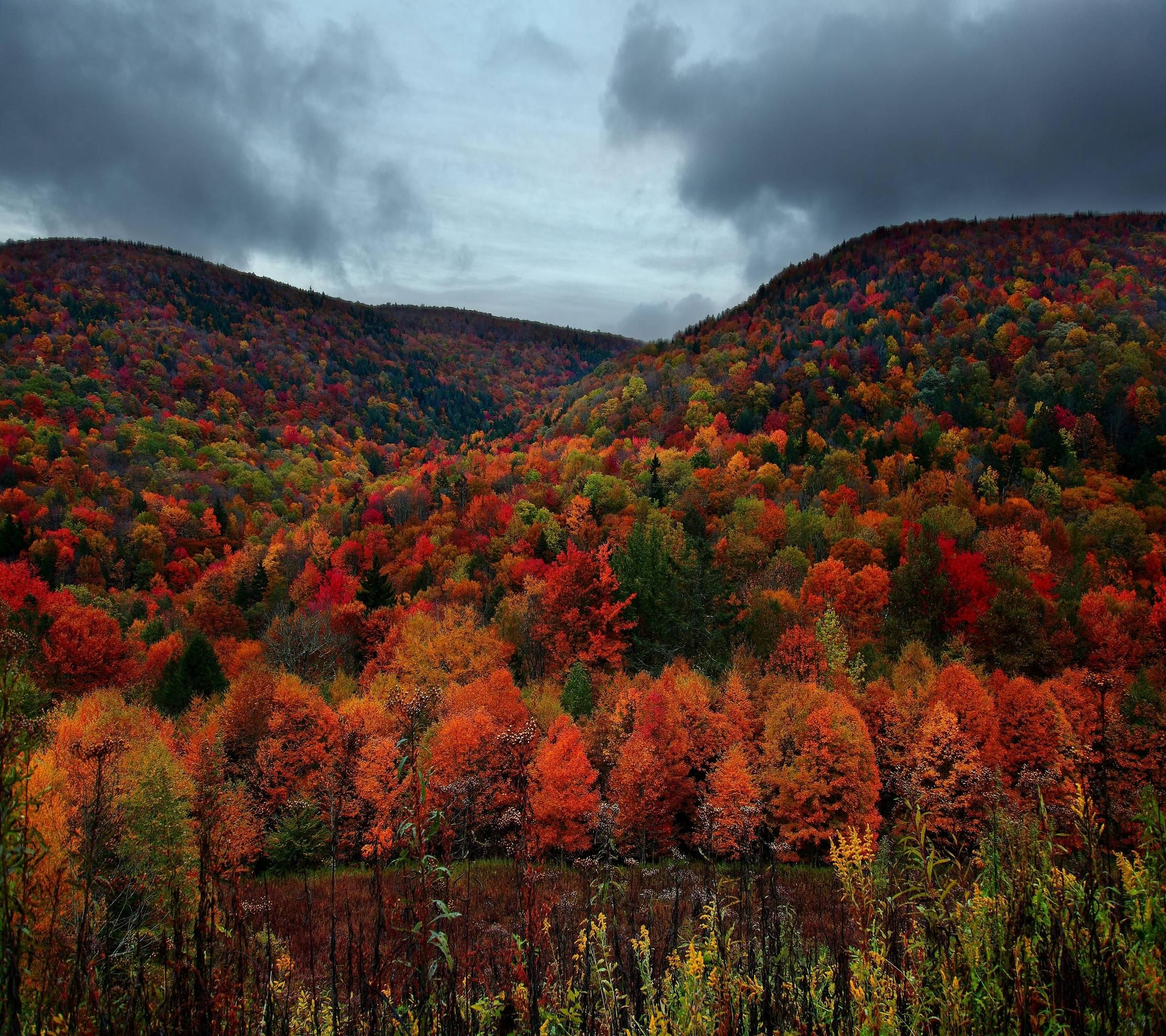 Alppalachian Mountains, Kentucky. [2880×2560] [OC] #reddit