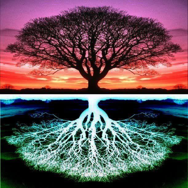 Kybalión – Así como es arriba es abajo | Arbol de la vida, Significado del  árbol de la vida, Tatuaje árbol de la vida
