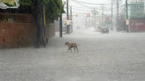 Armario de Noticias: Al menos un muerto y un desaparecido en Haití por ...