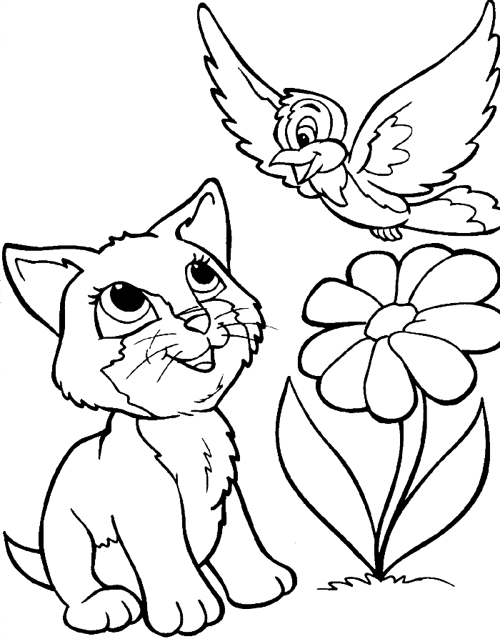 A Cat And Bird Coloring For Kids - animal Coloring Pages ...
