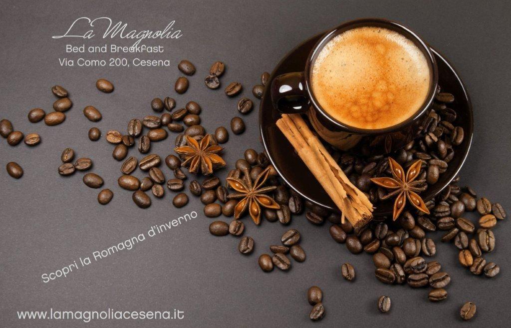 Offerta Natale e Capodanno in Romagna Il gusto delle cose semplici