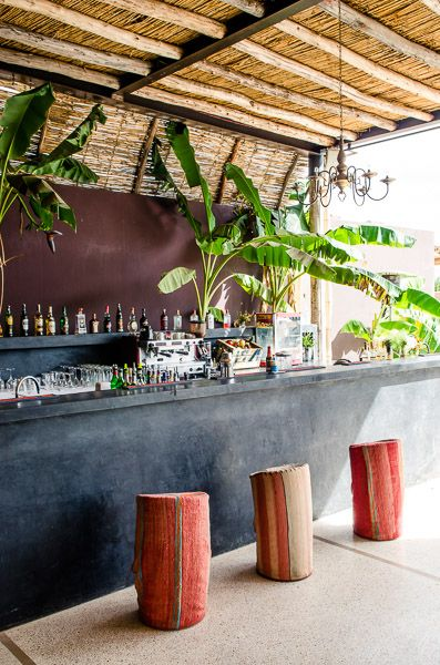 Palmas Jardin Pinterest Bar Restaurant And