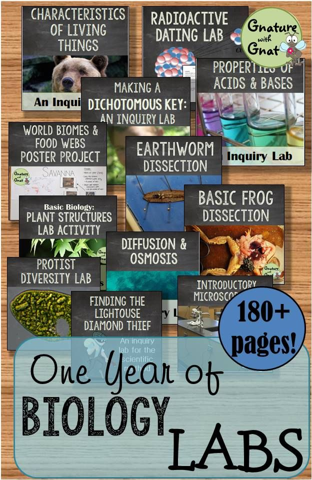 Fun and easy biology labs set 1 life science labs and activities this is bundle of 28 biology or life science labs and activities that will last you throughout the entire year fandeluxe Gallery