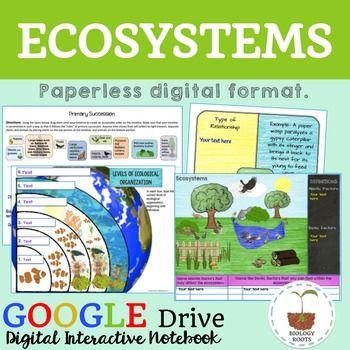 Ecology Digital Ecosystems Ecosystems Elementary Science Activities Biology Classroom