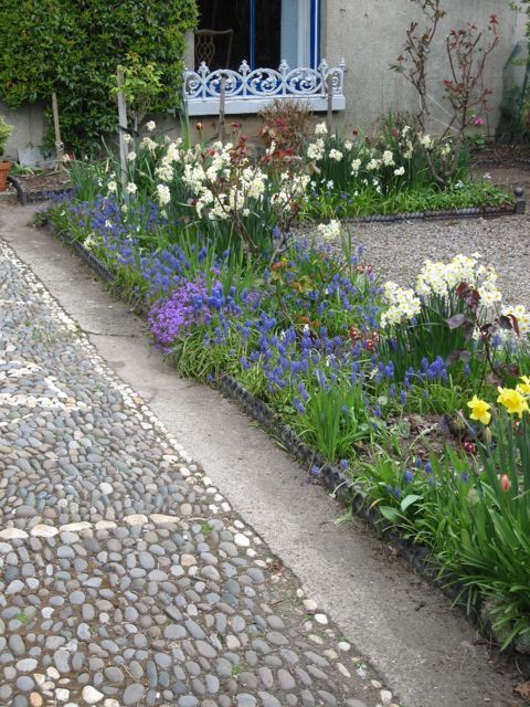 Pin By Howbert & Mays Gardens / DYG.IE On Plants And