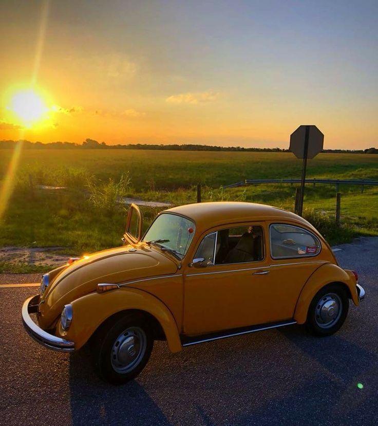 Genau wie mein erstes Auto VW Superbeetle kaufte für 2000