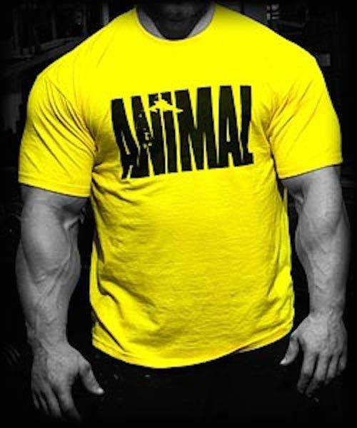 20d3dcb340f0 Universal Nutrition Animal Pak T-Shirt Yellow | GYM RAT | Animal ...