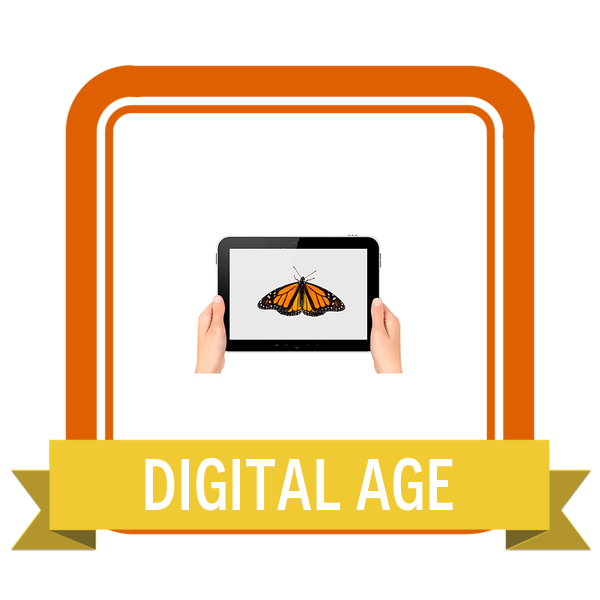 The Digital Age   Playful Learning