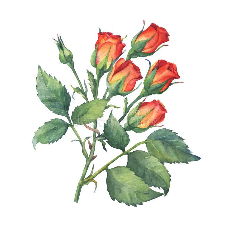 Idea by Urdu Skill on Digital Prints Bunch of flowers