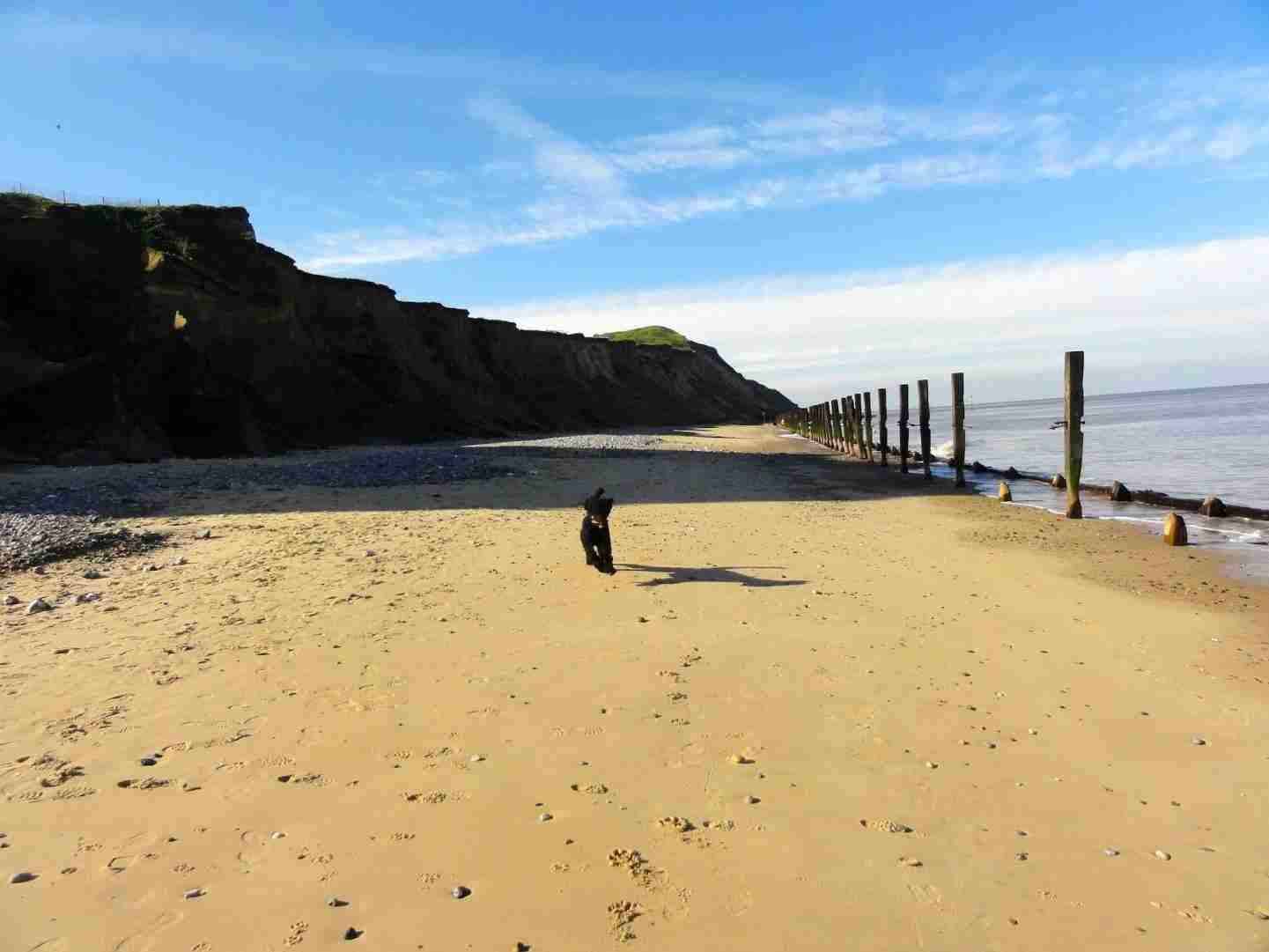Fabulous Barking Sands Beach Cottages Cornwall 2018 With Photos Download Free Architecture Designs Scobabritishbridgeorg