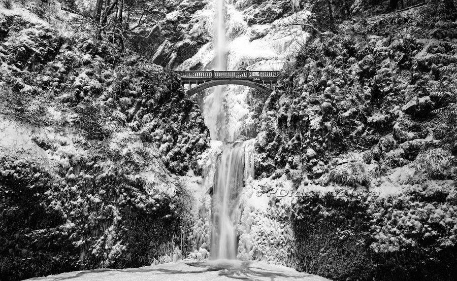 Frozen By Paul Didsayabutra On 500px