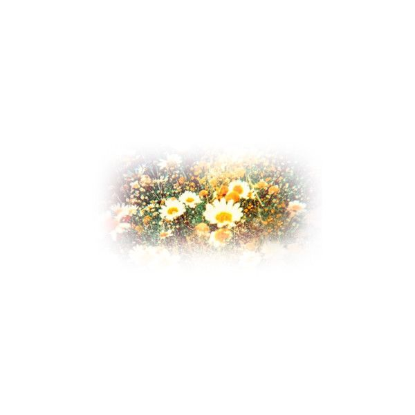 Epifanías Imagenes Editadas PNG ❤ liked on Polyvore featuring flowers, tubes, backgrounds, landscape and plants