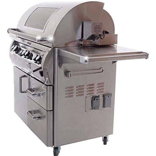 Lion Premium Grills 32 Inch Natural Gas Grill L75000 With Lion Single Side Burner And Eco Friendly Lion Refrigerator With 5 In 1 Bbq Tool Set Best Of Backyard G Natural Gas