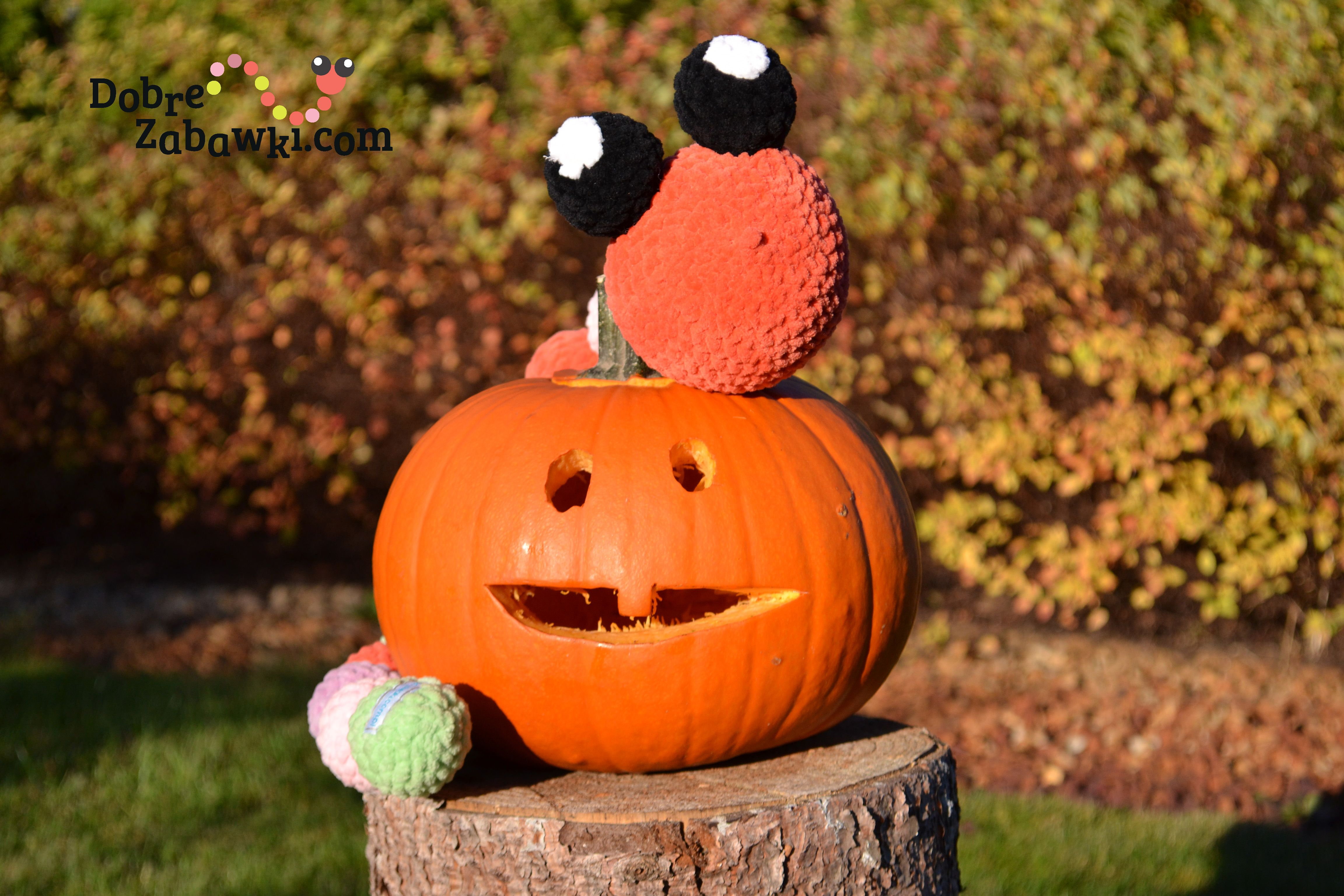 "Dyńka ""a Gugu"" czeka na halloween . dynia zabawa"