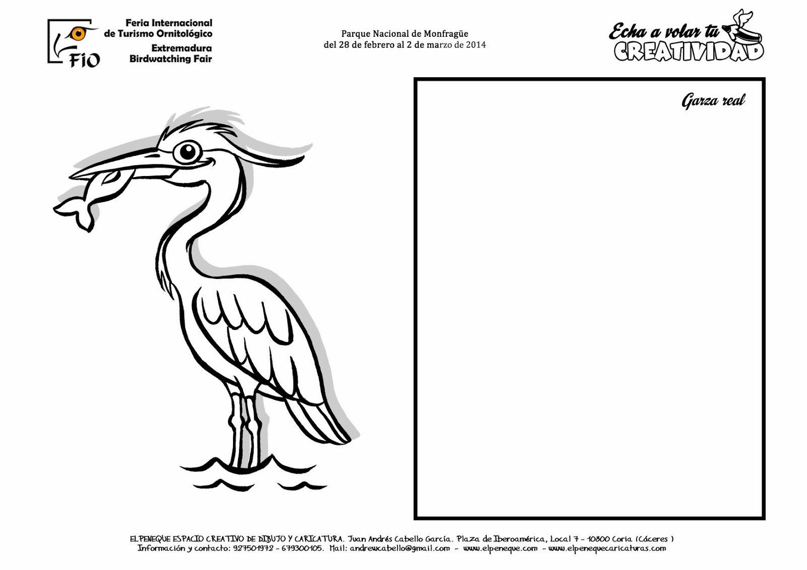 FICHAS DE AVES PARA DIBUJAR Y COLOREAR EN FIO | Garza real | aves ...