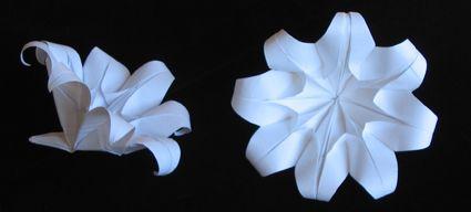 Fiori 8 Petali.V Cappellini Origami Fiore A 8 Petali Origami Origami