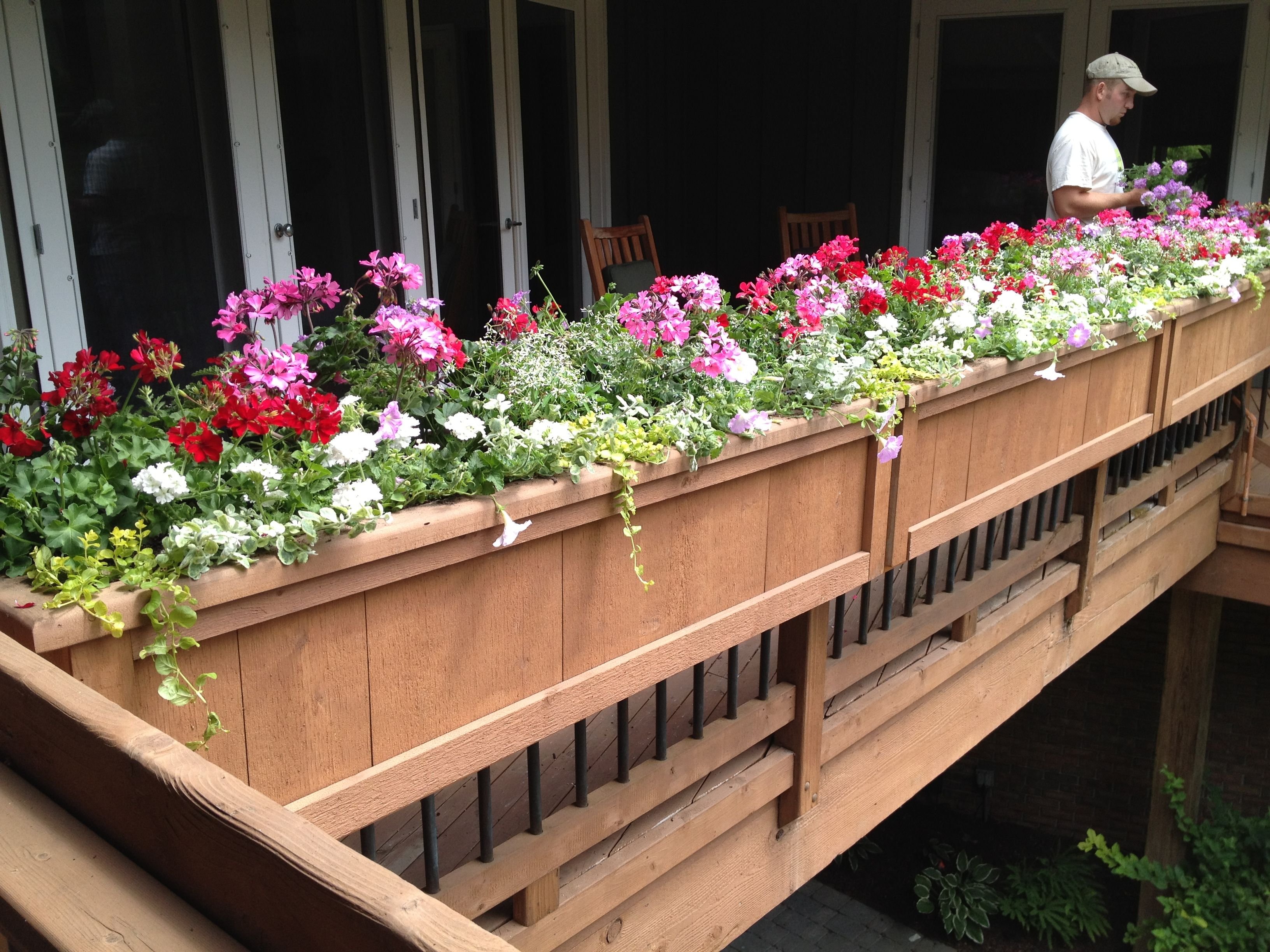 Annual Plantings Dirt Simple Deck Railing Planters Deck