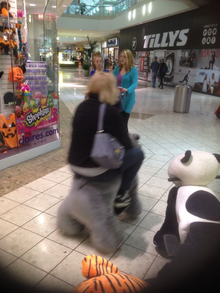 Electric Mall Animals