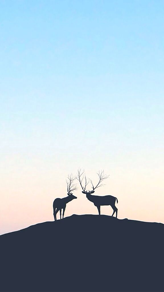 Iphone wallpaper silhouette animals cervo lockscreen papel - Phone animal wallpapers ...