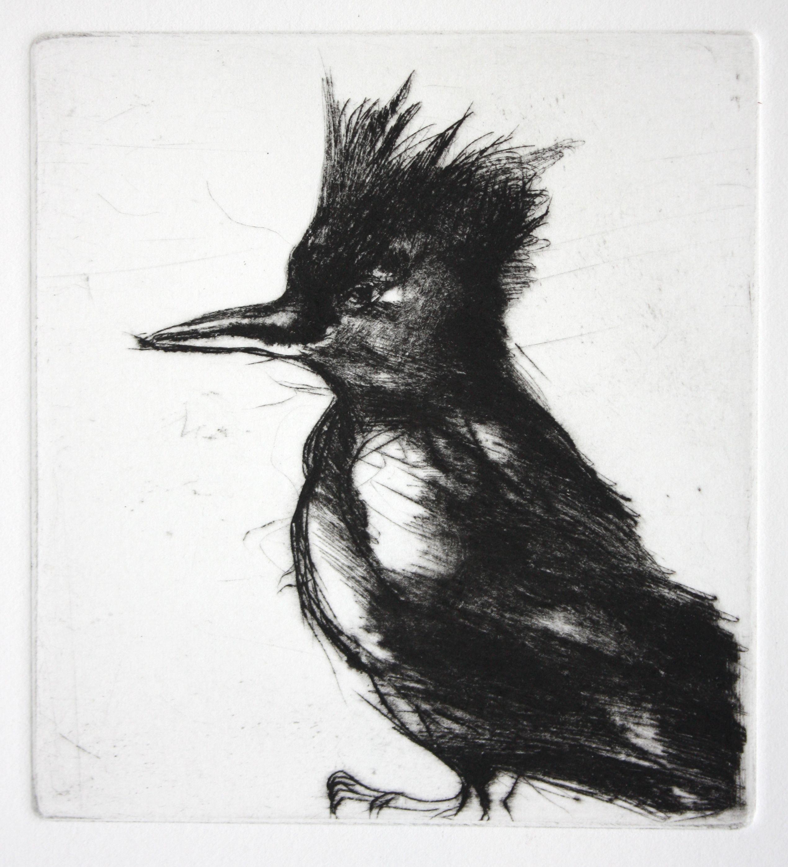 Amy buchholz kingfisher drypoint print